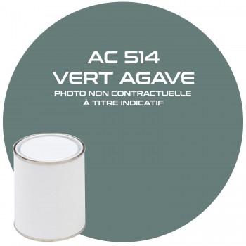 PEINTURE AC 514 VERT AGAVE ANNEE 65.66  1KG