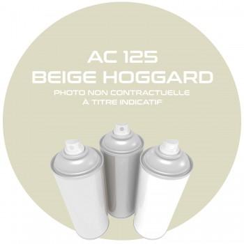 AEROSOL BEIGE HOGGARD AC 125 400 ML